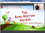 Bone Marrow Garden